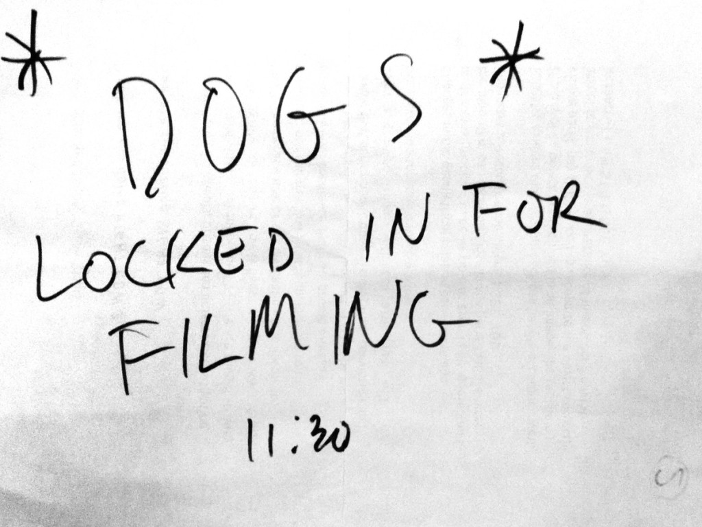 Sign for the dogs.